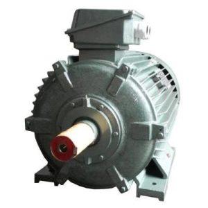 Động cơ điện 3 pha 200kW 270hp