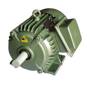 Động cơ điện 3 pha 2,2kW 3hp