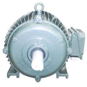 Động cơ điện 3 pha 30kW 40hp