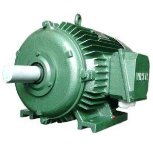 Động cơ điện 3 pha 33kW 45hp