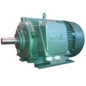 Động cơ điện 3 pha 55kW 75hp