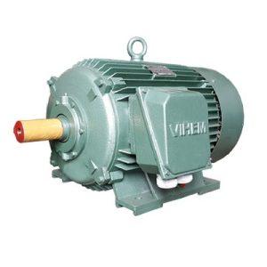 Động cơ điện 3 pha 75kW 100hp