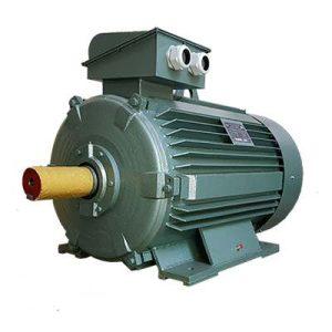 Động cơ điện 3 pha 250kW 340hp