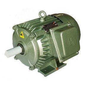 Động cơ điện 3 pha 3kW 4hp