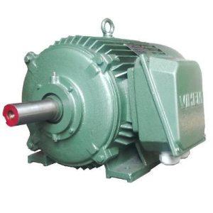 Động cơ điện 3 pha 90kW 125hp