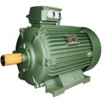 Động cơ điện 160kW - 1500