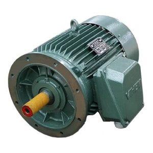 45 kW Mặt Bích