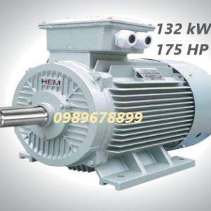 Mô tơ 132 kW 175 HP