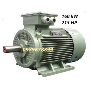 Mô tơ 160 kW 215 HP