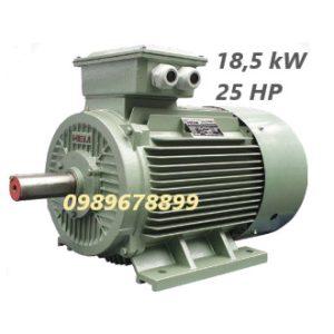 Mô tơ 18,5 kW 25 HP