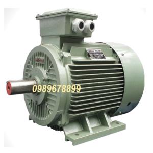 Mô tơ 22 kW 30hp