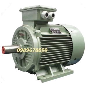 Mô tơ 30 kW 40 HP