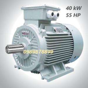 Mô tơ 40 kW 55 HP