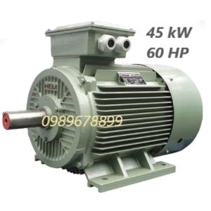 Mô tơ 45 kW 60HP