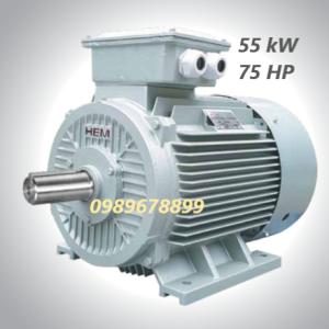 Mô tơ 55 kW 75 HP