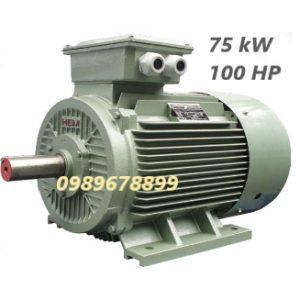 Mô tơ 75 kW 100 HP